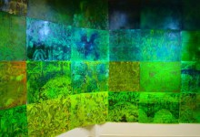 Voyage dans l'Amazonie des Terres Froides